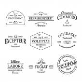 Vintage and retro style logos and labels set — Stock Vector