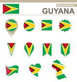 Guyana Flag Collection — Stock Vector