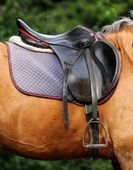 Close up of horse saddle. — Stock Photo