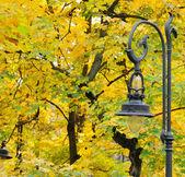 Lantern in the park autumn  — Stock Photo
