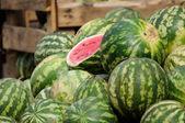 Watermelon. — Stock Photo