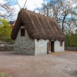 Traditional old Viking Age house — Stock Photo #62678015