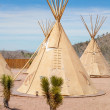 Постер, плакат: National wigwam of American Indians