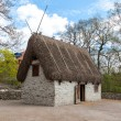 Traditional old Viking Age house — Stock Photo #67146765