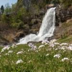 Waterfall in Norway — Stock Photo #67160917