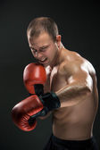 Young Boxer boxing — Stock Photo