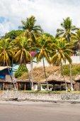 Palm trees at Playa El Tunco, El Salvador — Stock Photo