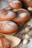 Variety of rye bread on a wooden background — Stock Photo