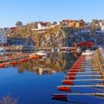 Empty marina docks with red — Stock Photo #63847013