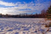 Marshy moorland covered with snow — Stock Photo