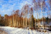 Small farmland covered with snow — Stock Photo