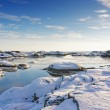 Bay fjord covered in ice in the winter — Stock Photo #64795471
