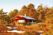 Red cottage among Norwegian spruce and pine trees in winter — Stock Photo