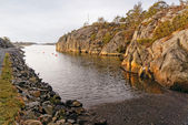 Norwegian creek in countryside — Stock Photo
