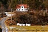 Norwegian farm in forest — Stock Photo