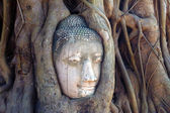 Budha image — Stok fotoğraf