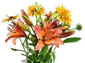 Flowers bouquet of lilies on white — Stock Photo