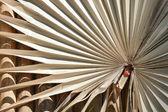 Dry palm leaf pattern — Stockfoto