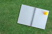 White page of notebook on grass texture — Stock Photo