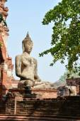 Buddha statue in Mahathat temple, Ayutthaya — Stok fotoğraf