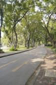 Lumpini Public park — Stock Photo