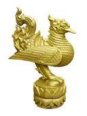 Thai golden swan — Foto Stock