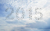 Happy new year 2015 compose from birds — Stock Photo