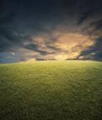 Empty space, field of green grass and sky — Stock Photo