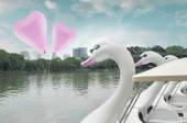 Pink heart love balloon float on air with swan pedal boat at pub — Stock Photo