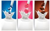 Milk splash with blueberry, raspberry, chocolate — Stock Vector
