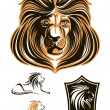 Set of lion's images — Stock Vector #55995527