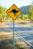 Warning kangaroo sign — Stock Photo