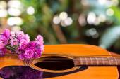Guitar and flower — Stock Photo