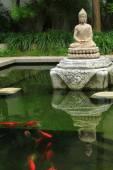 Buddha Statue And Fishes — ストック写真