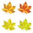 Set of vector colorful maple leaves — Stock Vector #57530545
