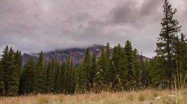 Motion dolly shot of cloudy afternoon in Banff National Park — Stock Video