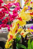 The beautiful yellow flowe — Stock Photo