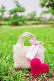 Corazón y una bolsa de regalo en la hierba — Foto de Stock