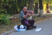 Street violinist in Yerevan — Stock Photo