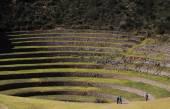 Ancient Inca circular terraces at Moray — Stock Photo