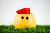 Smile smily — Stock Photo