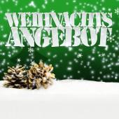 Pinecone Merry Christmas green — Stock Photo