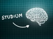 Studium brain background knowledge science blackboard turquoise — Stockfoto