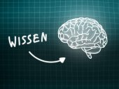 Wissen brain background knowledge science blackboard turquoise — 图库照片