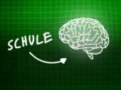 Schule brain background knowledge science blackboard green — ストック写真
