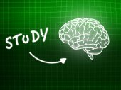 Study brain background knowledge science blackboard green — Stockfoto