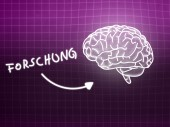 Forschung brain background knowledge science blackboard pink — Stockfoto