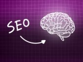 SEO brain background knowledge science blackboard pink — Stockfoto