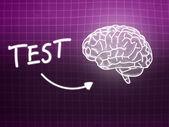 Test brain background knowledge science blackboard pink — Stock Photo