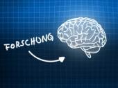 Forschung brain background knowledge science blackboard blue — Stock Photo